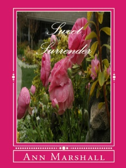 sweet-surrender-cover-for-goodreads