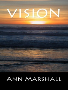 vision-cover-for-goodreads
